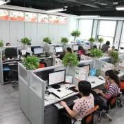 美展(上海)商务